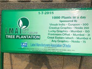 tree plantation1